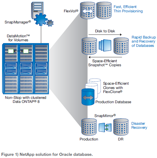 NetApp solution for Oracle database.